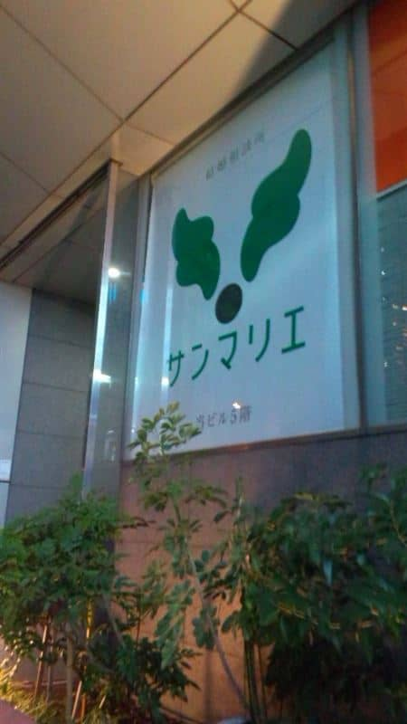 141115 183901 ed - サンマリエ40代の評判は?銀座と新宿の様子を写真動画で!!